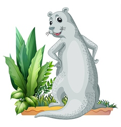 Cartoon Otter vector image vector image