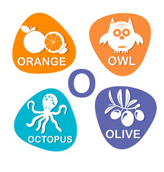 cute alphabet in o letter for orange owl vector image