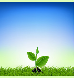 Green grass with young plant vector