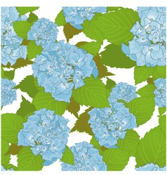 Seamless background with blue hydrangea vector image