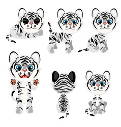 Striped gray tiger cub in different poses vector