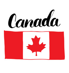 canada hand drawn flag with maple leaf and vector image