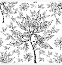 seamless tree pattern 011 grunge vector image