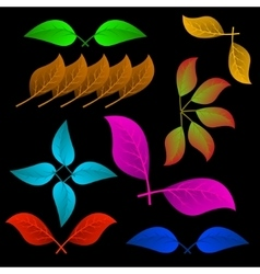 A variety of abstract leaves vector image