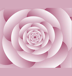 abstract flower spiral background vector image vector image