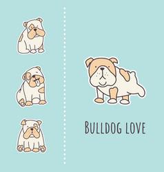 Bulldog card vector