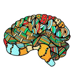 Colored Sketchy Human Brain vector image