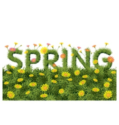 Flowers Spring Field Season Background with Word vector image
