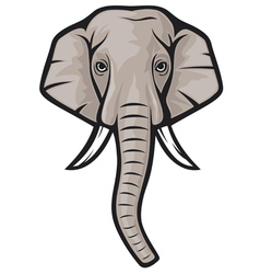 indian elephant head vector image vector image