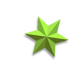 paper star vector image vector image