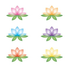 Set of lotus flowers on a white background vector