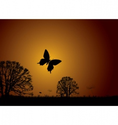 sunset nature butterfly vector image vector image