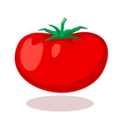 Tomato in cartoon style vector image vector image