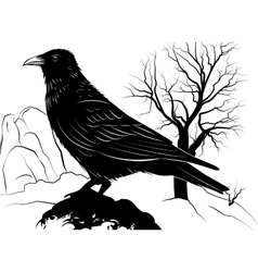 With raven on a rock on a background vector