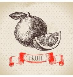 Hand drawn sketch fruit orange eco food vector