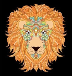 head of lion on black background vector image vector image