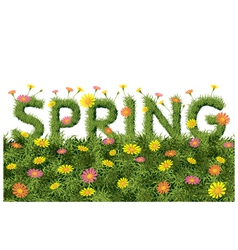 Flowers spring field season background with word vector