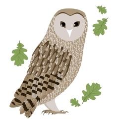 a Barn Owl vector image vector image