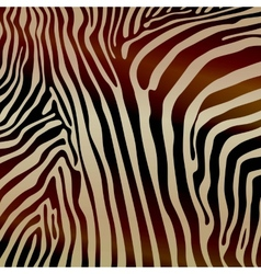 Savannah pattern background design elements zebra vector