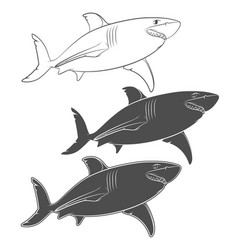Set of with a great white shark vector