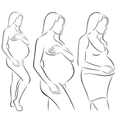 Silhouettes of pregnant woman vector image