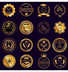 Collection of vintage round golden badges vector image vector image