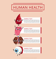 Human health medical poster with internal organs vector