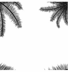 palm leaves black silhouettes tropical palm vector image vector image