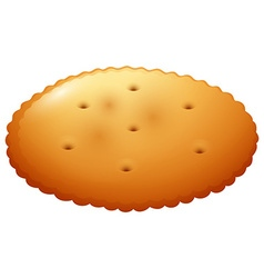 Round cracker on white vector