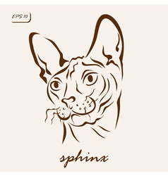 Sphinx cat vector
