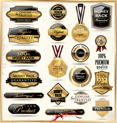 Luxury gold and black labels vector image