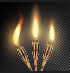 Burning beach bamboo torch burning in the dark vector