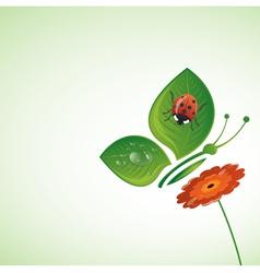 summer beetle vector image
