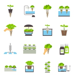 Hydroponic flat icons vector