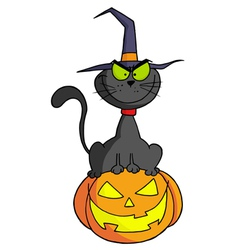 Cartoon Character Halloween Cat On Pumpkin vector image vector image