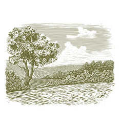 Woodcut countryside scene vector