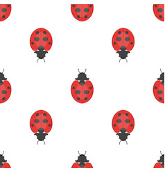 Flat style seamless pattern with ladybug vector