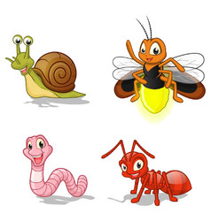 Insect cartoon character pack three vector