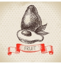 Hand drawn sketch fruit avocado eco food vector