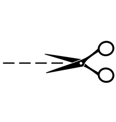 cut line with scissors vector image vector image