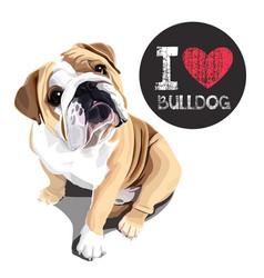 i love bulldog vector image