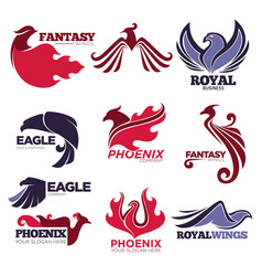 Phoenix fire bird fantasy eagle template vector