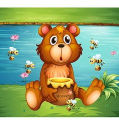 Cartoon Honey Bear vector image
