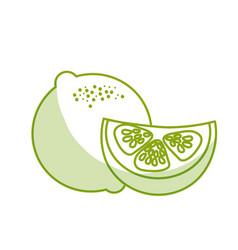 Silhouette fresh lemon with slice organ fruit food vector