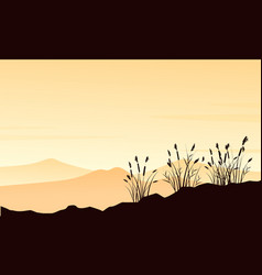 silhouette of mountain with course grass landscape vector image