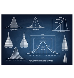 Standard Deviation Diagram with Population Pyramid vector image vector image