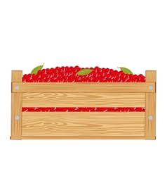 Box with red berry vector image vector image
