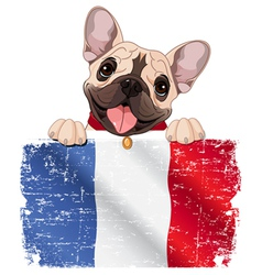 French bulldog fan vector image vector image