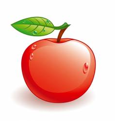 glossy apple vector image