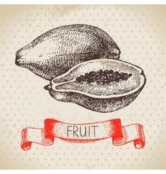 Hand drawn sketch fruit papaya Eco food vector image vector image